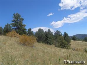 Elizbone, Central City, CO 50427 - Central City, CO real estate listing