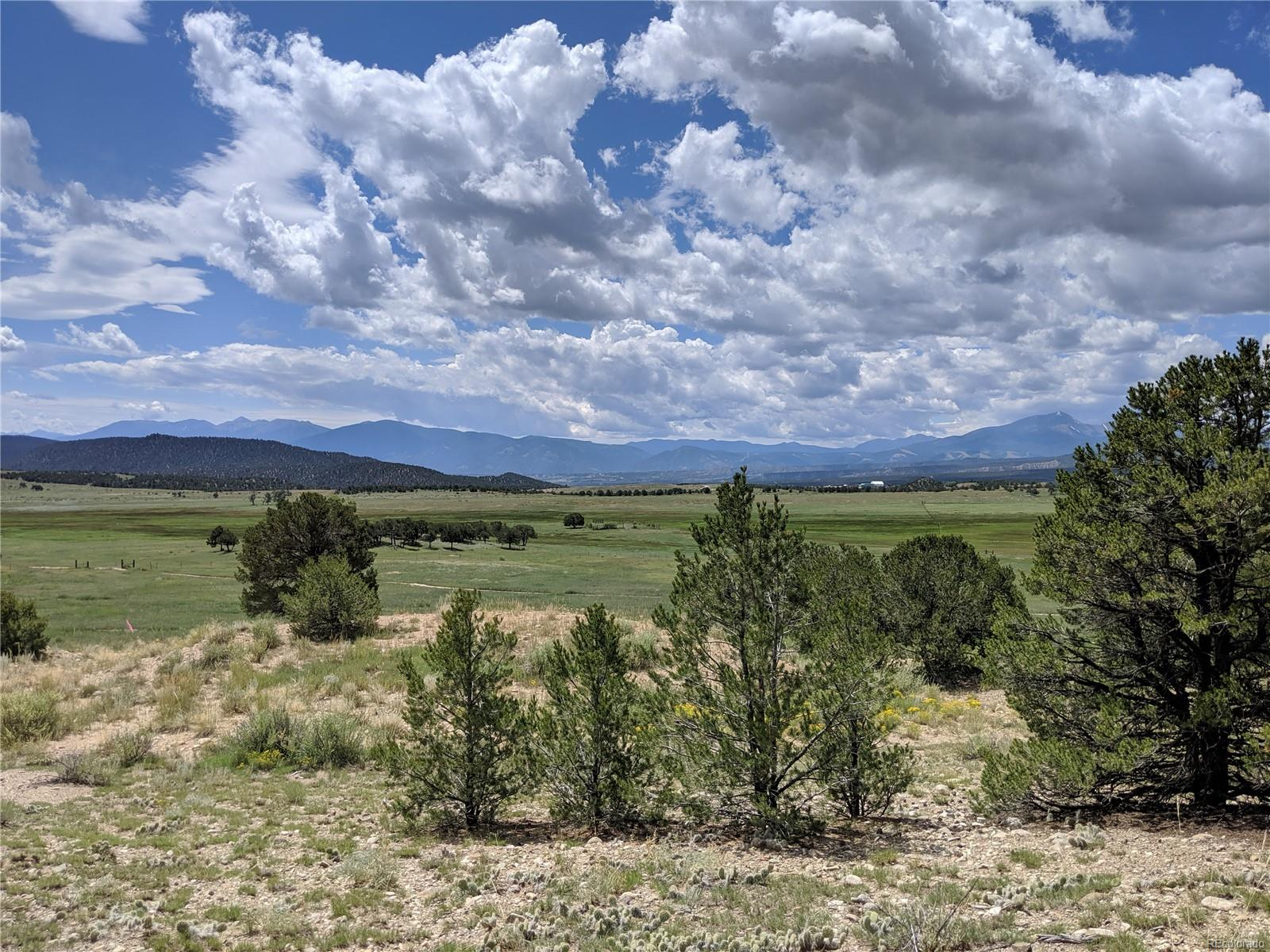 Lot 21, Nathrop, CO 81236 - Nathrop, CO real estate listing