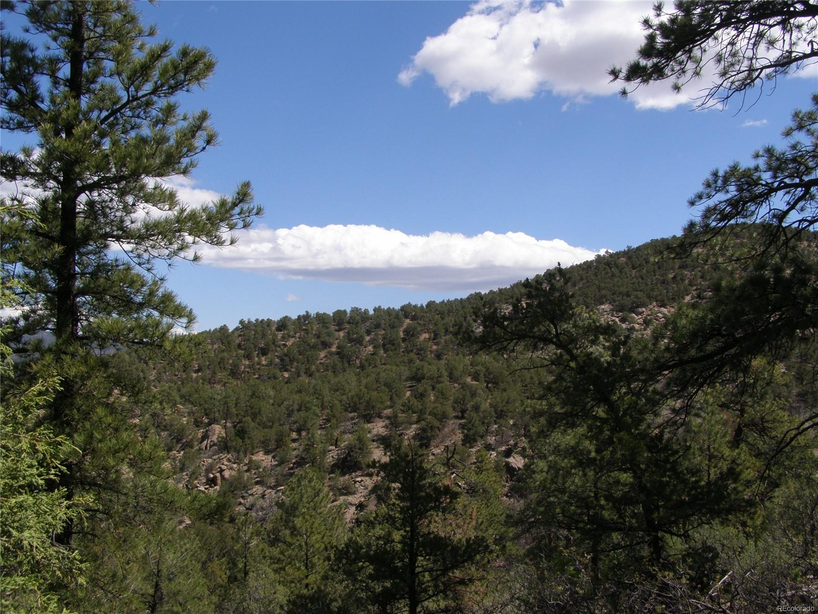 Lot 5 Fil #13 Redtail Trail, Cotopaxi, CO 81223 - Cotopaxi, CO real estate listing