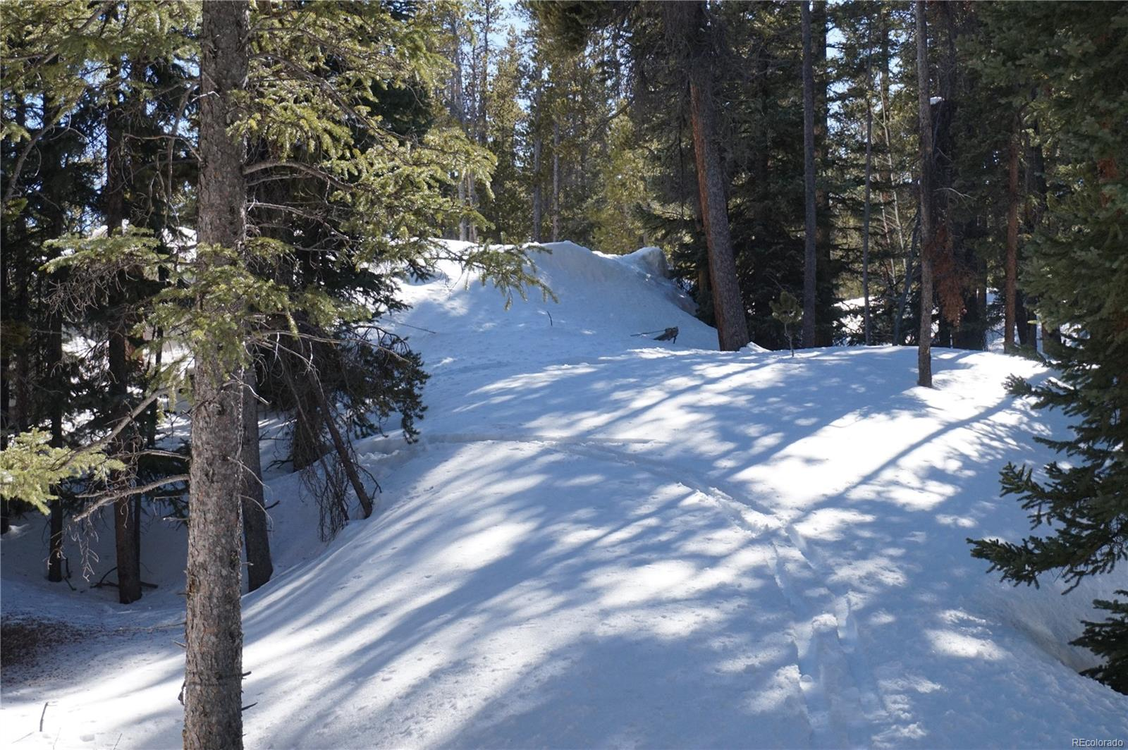 132 Seventy Two Road, Fairplay, CO 80440 - Fairplay, CO real estate listing
