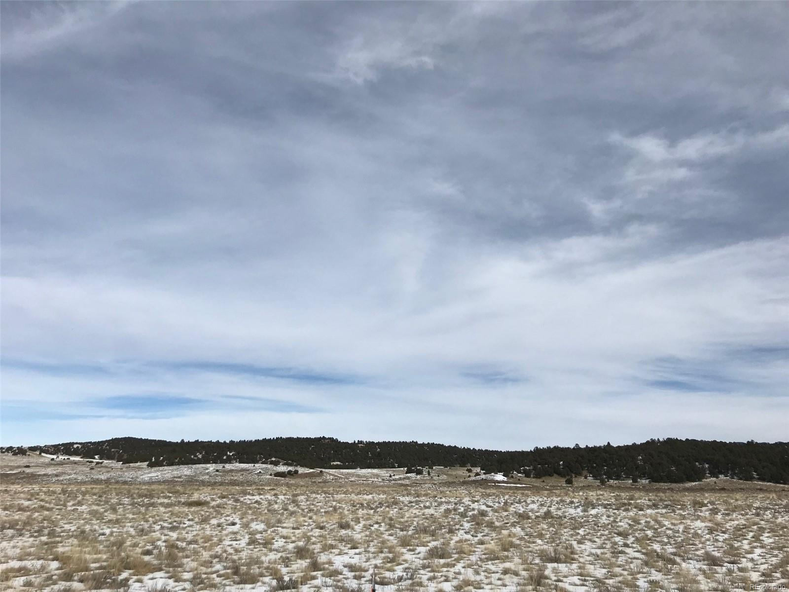829 County 310 Road, Westcliffe, CO 81252 - Westcliffe, CO real estate listing