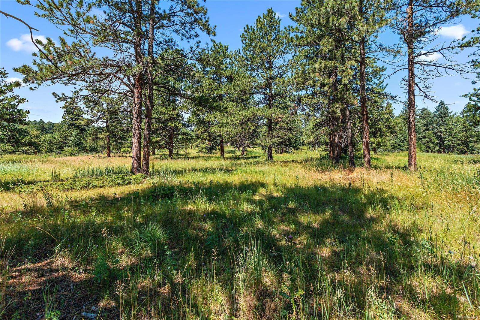 8197 Centaur Drive, Evergreen, CO 80439 - Evergreen, CO real estate listing
