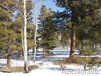 Aspen Drive, Bailey, CO 80421 - Bailey, CO real estate listing