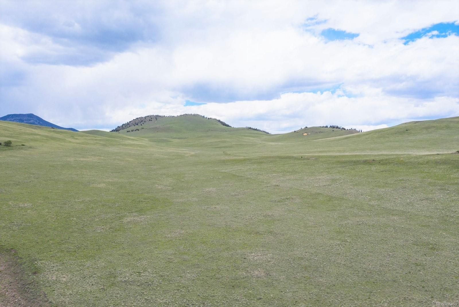Aspen Meadows Ranch In Guffey Real Estate Listings Main Image