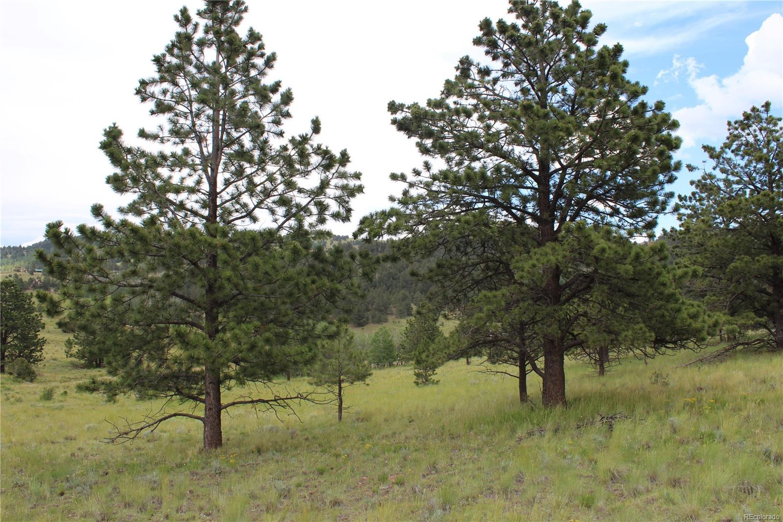 143 Pipeweed Path, Westcliffe, CO 81252 - Westcliffe, CO real estate listing