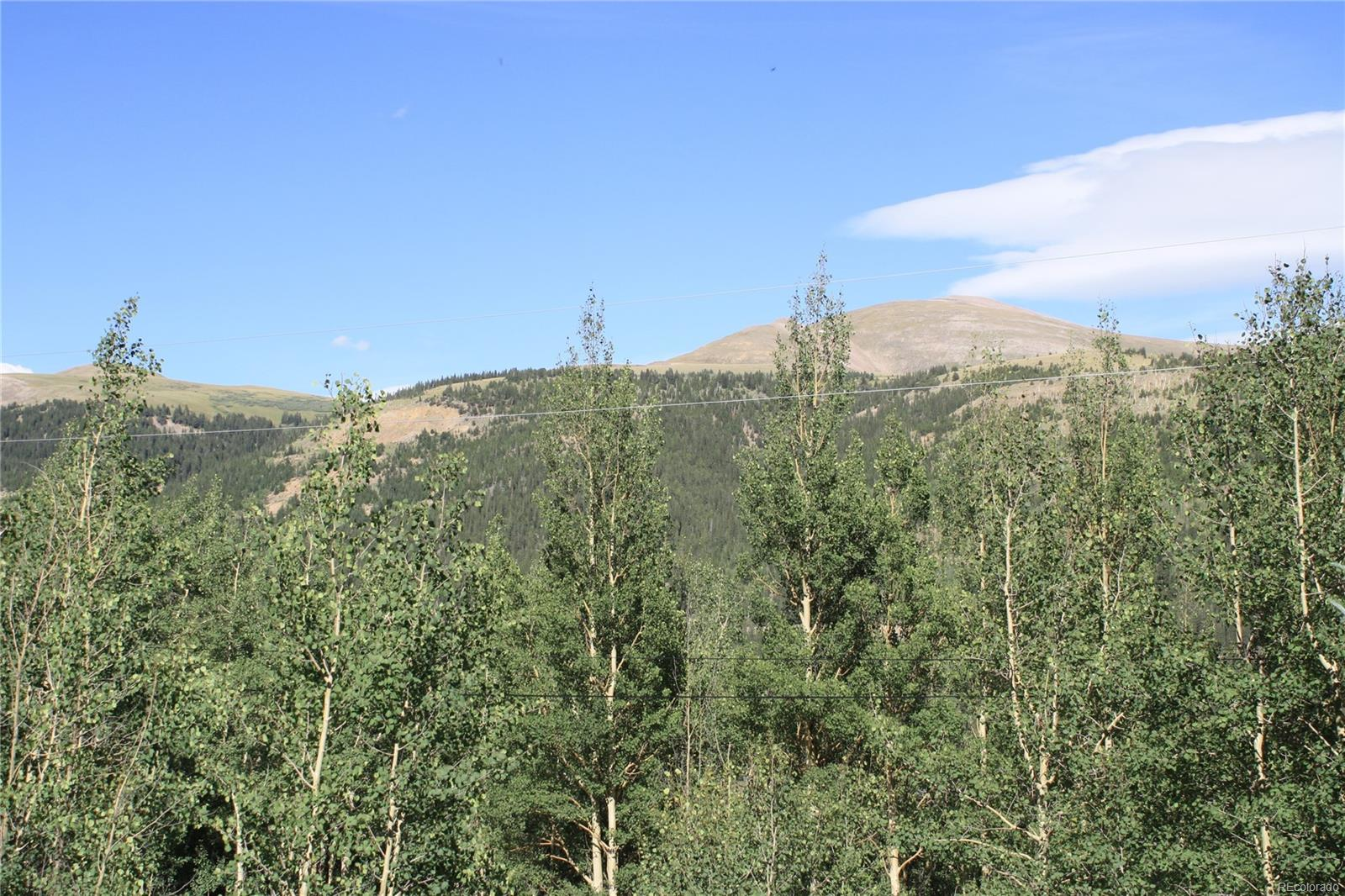 1111 Quartzville Road, Alma, CO 80420 - Alma, CO real estate listing