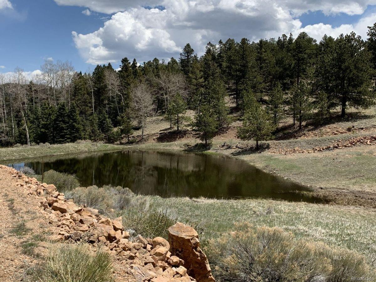 Eagle Springs Road, Westcliffe, CO 81252 - Westcliffe, CO real estate listing