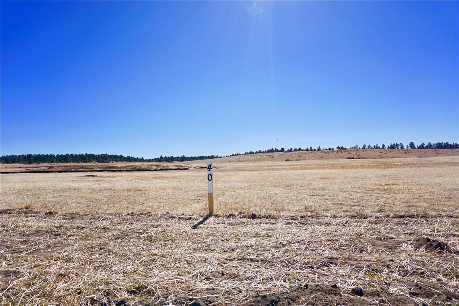 2742 N Flintwood Road, Franktown, CO 80116 - Franktown, CO real estate listing