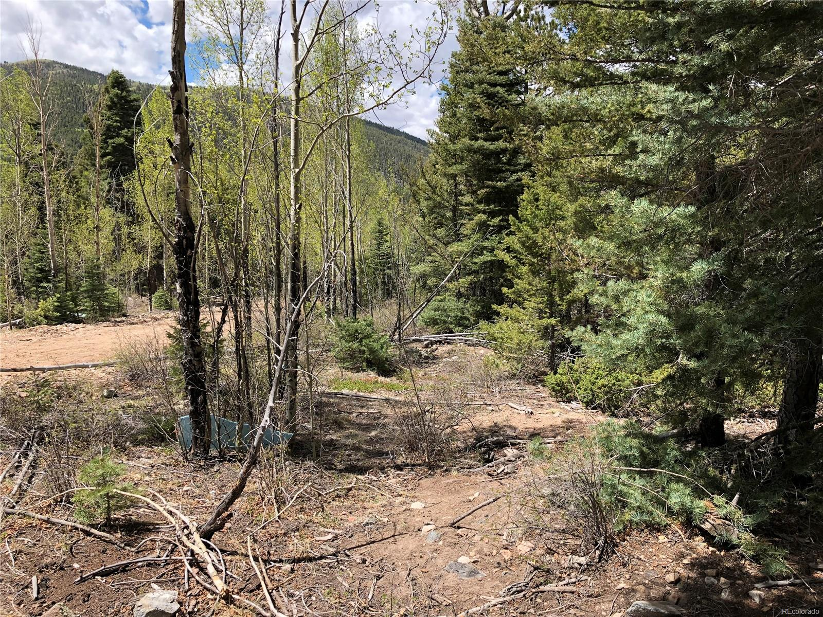 2771 Gonzales Road, Fort Garland, CO 81133 - Fort Garland, CO real estate listing