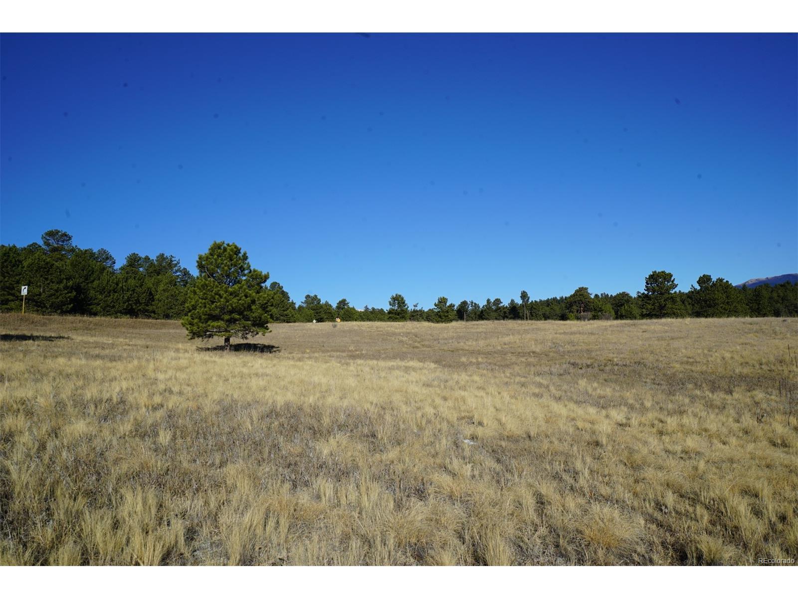 10 Bulldogger Drive, Bailey, CO 80421 - Bailey, CO real estate listing
