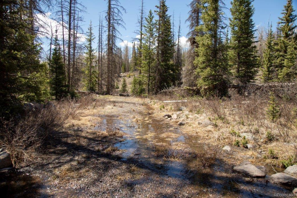 Best Friend Ms, Creede, CO 81130 - Creede, CO real estate listing