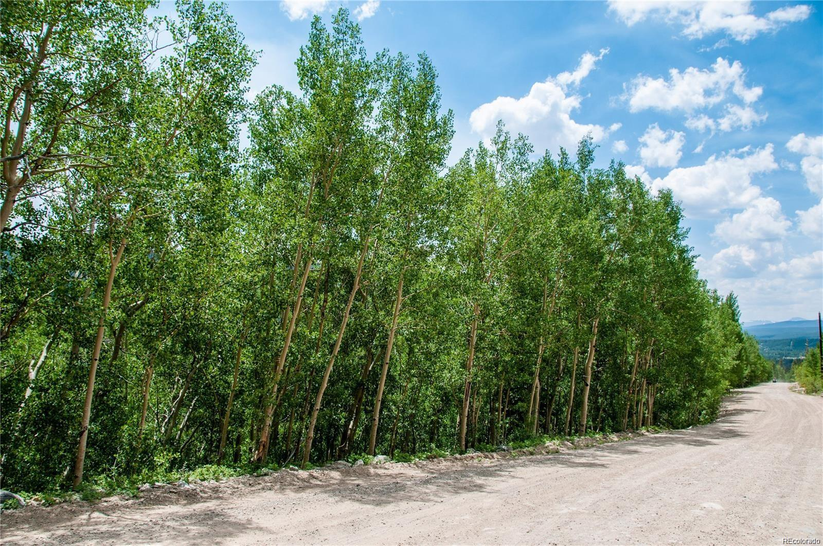 1112 Quartzville Road, Alma, CO 80420 - Alma, CO real estate listing