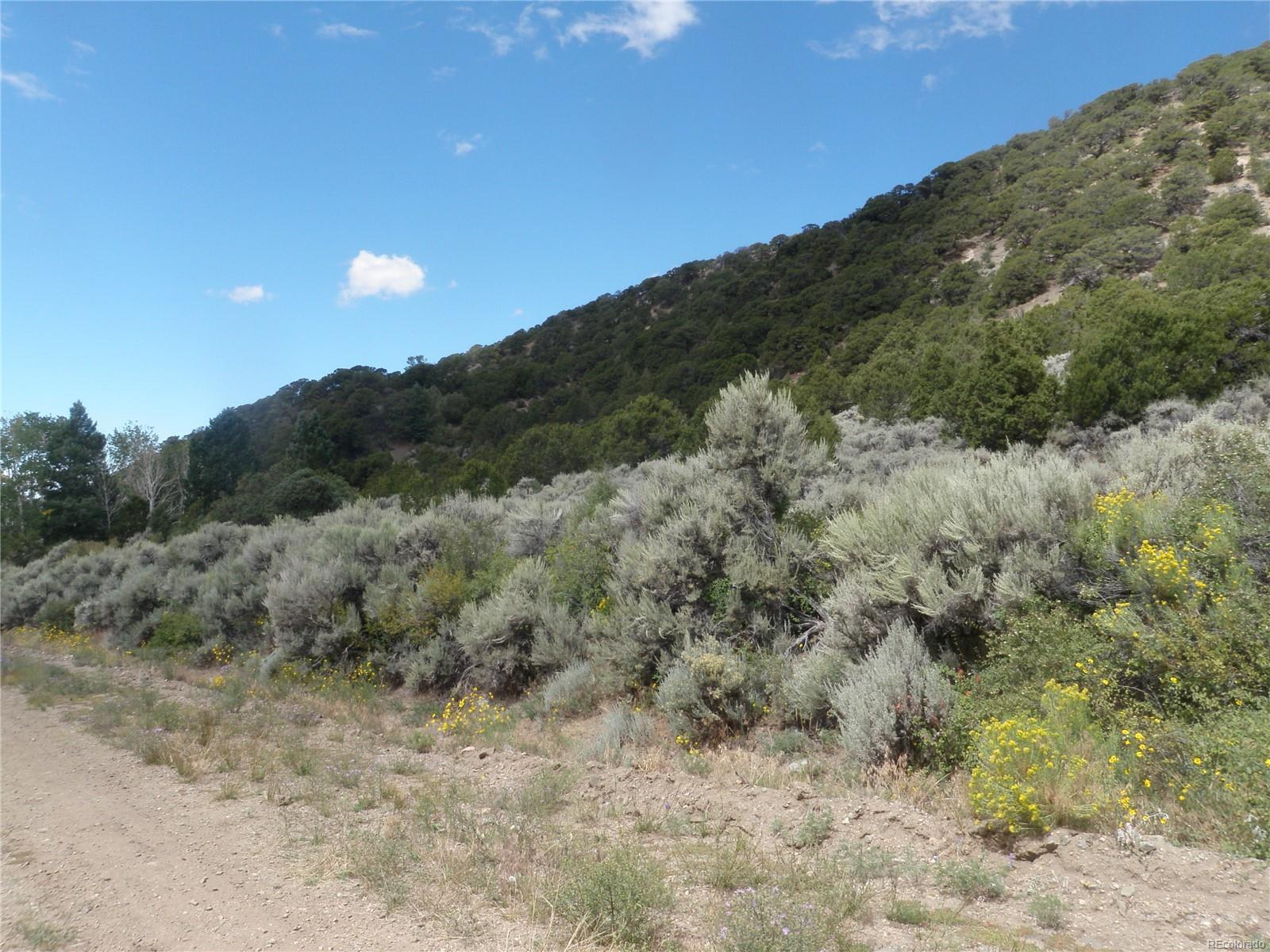TBD Jewitt Drive, Fort Garland, CO 81133 - Fort Garland, CO real estate listing