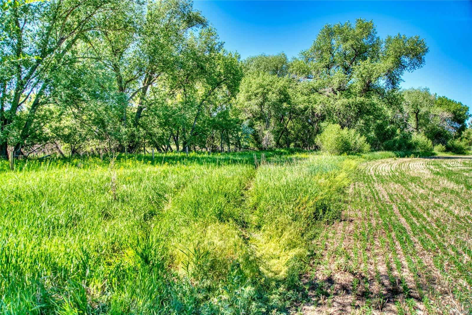 Fort Collins Real Estate Listings Main Image