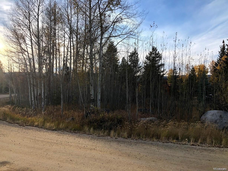 801 County Road 4980, Grand Lake, CO 80447 - Grand Lake, CO real estate listing