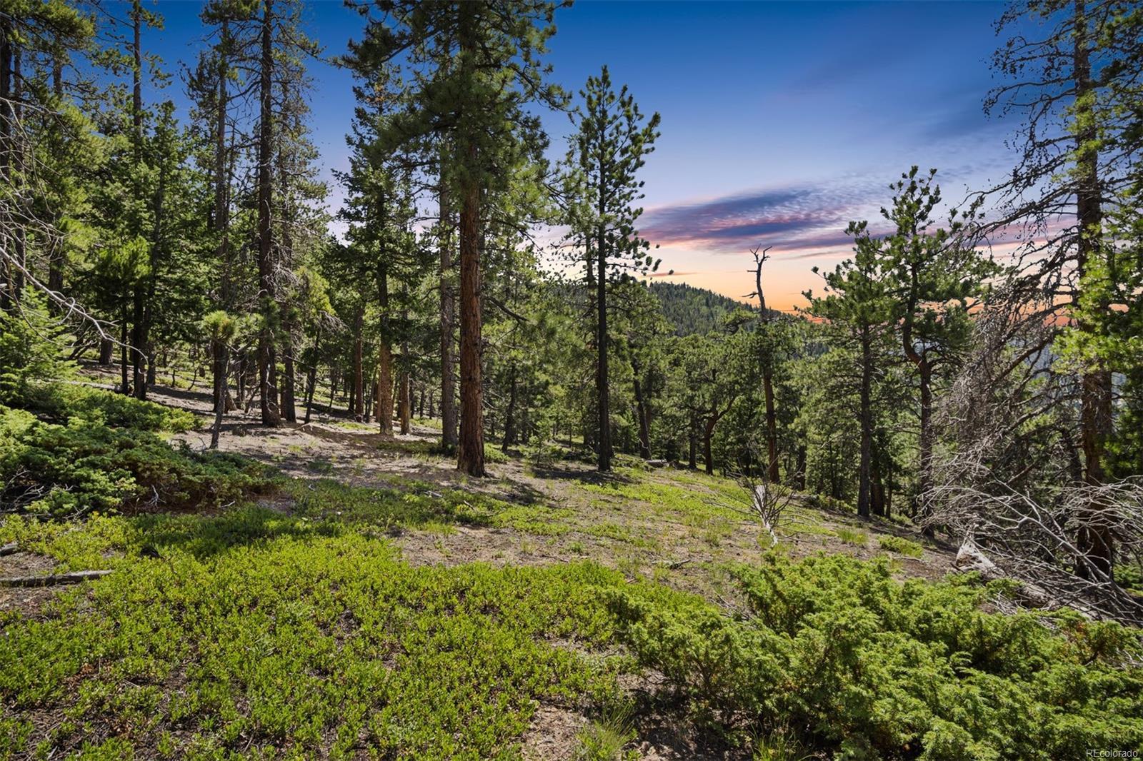 Coal Creek Canyon Real Estate Listings Main Image