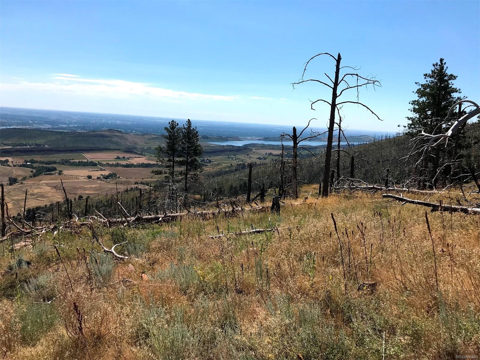 890 Hernia Hill Trail, Bellvue, CO 80512 - Bellvue, CO real estate listing