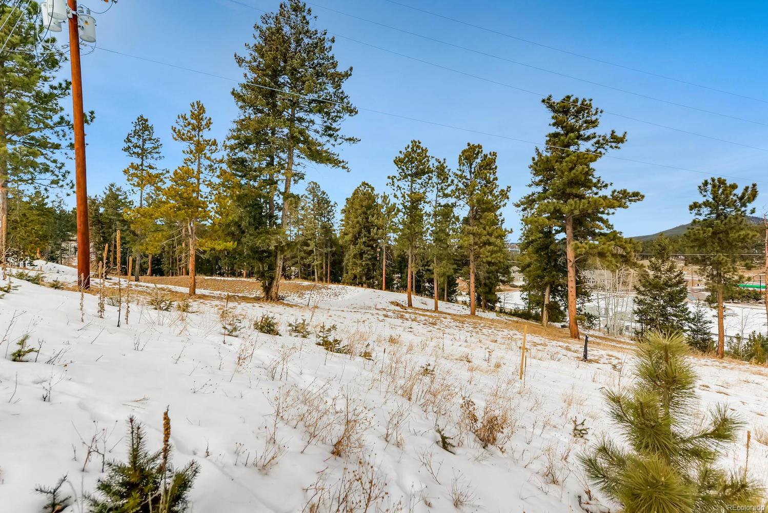11000 Kitty 3 Drive, Conifer, CO 80433 - Conifer, CO real estate listing