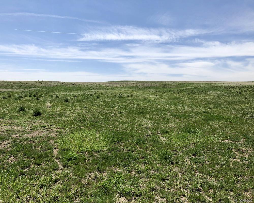 41383 Bijou View Street, Agate, CO 80101 - Agate, CO real estate listing