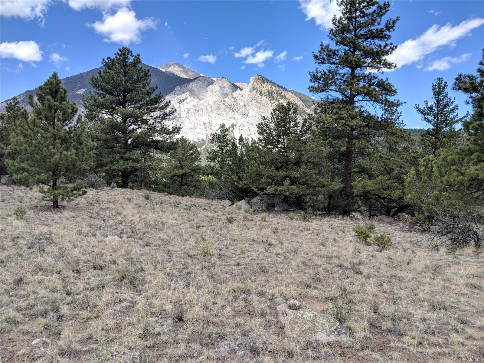 16088 Oppliger Drive, Nathrop, CO 81236 - Nathrop, CO real estate listing