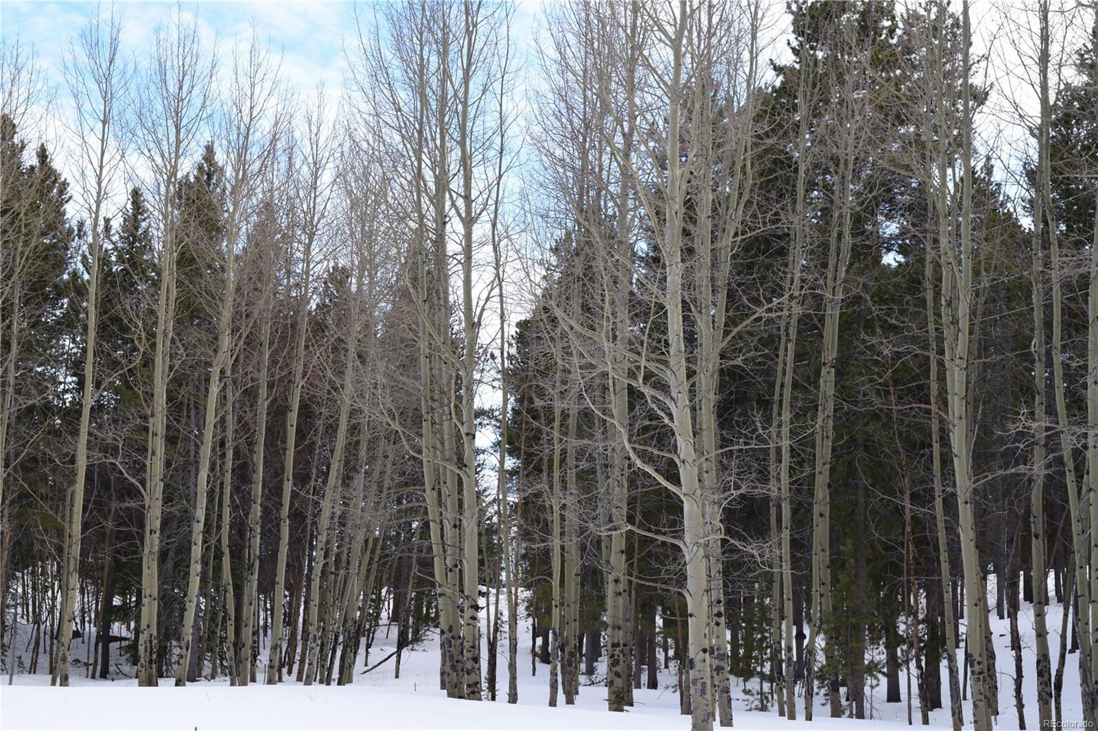 9249 Black Mountain Drive, Conifer, CO 80433 - Conifer, CO real estate listing
