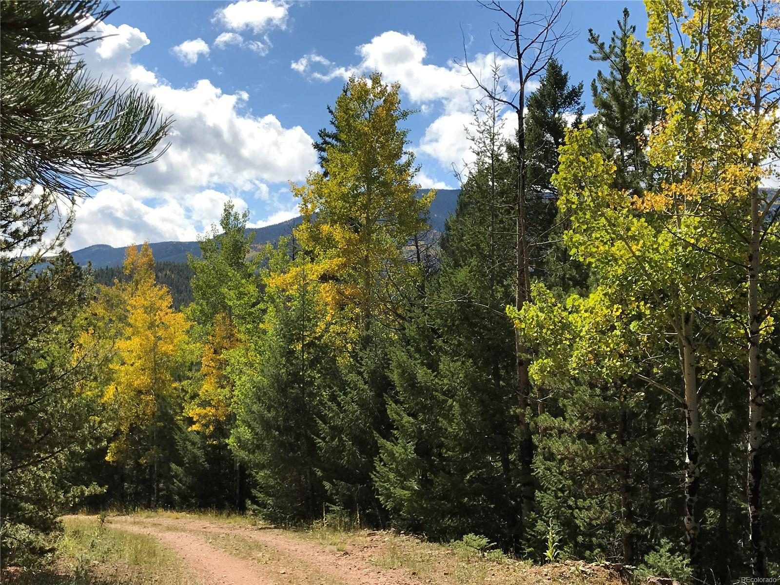 7231 Timbertrail Road, Evergreen, CO 80439 - Evergreen, CO real estate listing