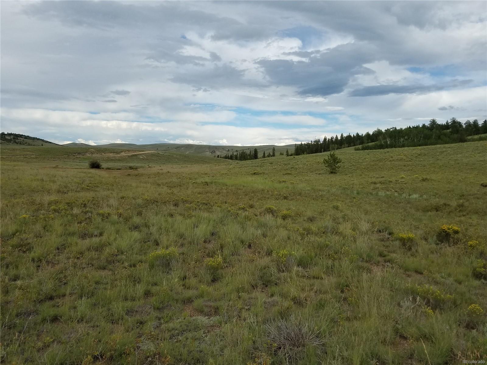 Badger Creek Ranch Real Estate Listings Main Image