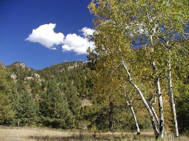 0 Secluded Canyon Heights, Florissant, CO 80816 - Florissant, CO real estate listing