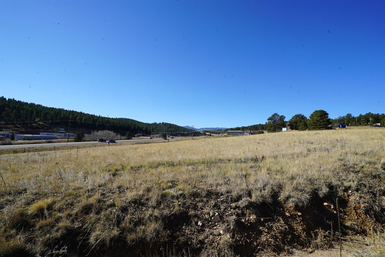 42 CO RD 43A Road, Bailey, CO 80421 - Bailey, CO real estate listing