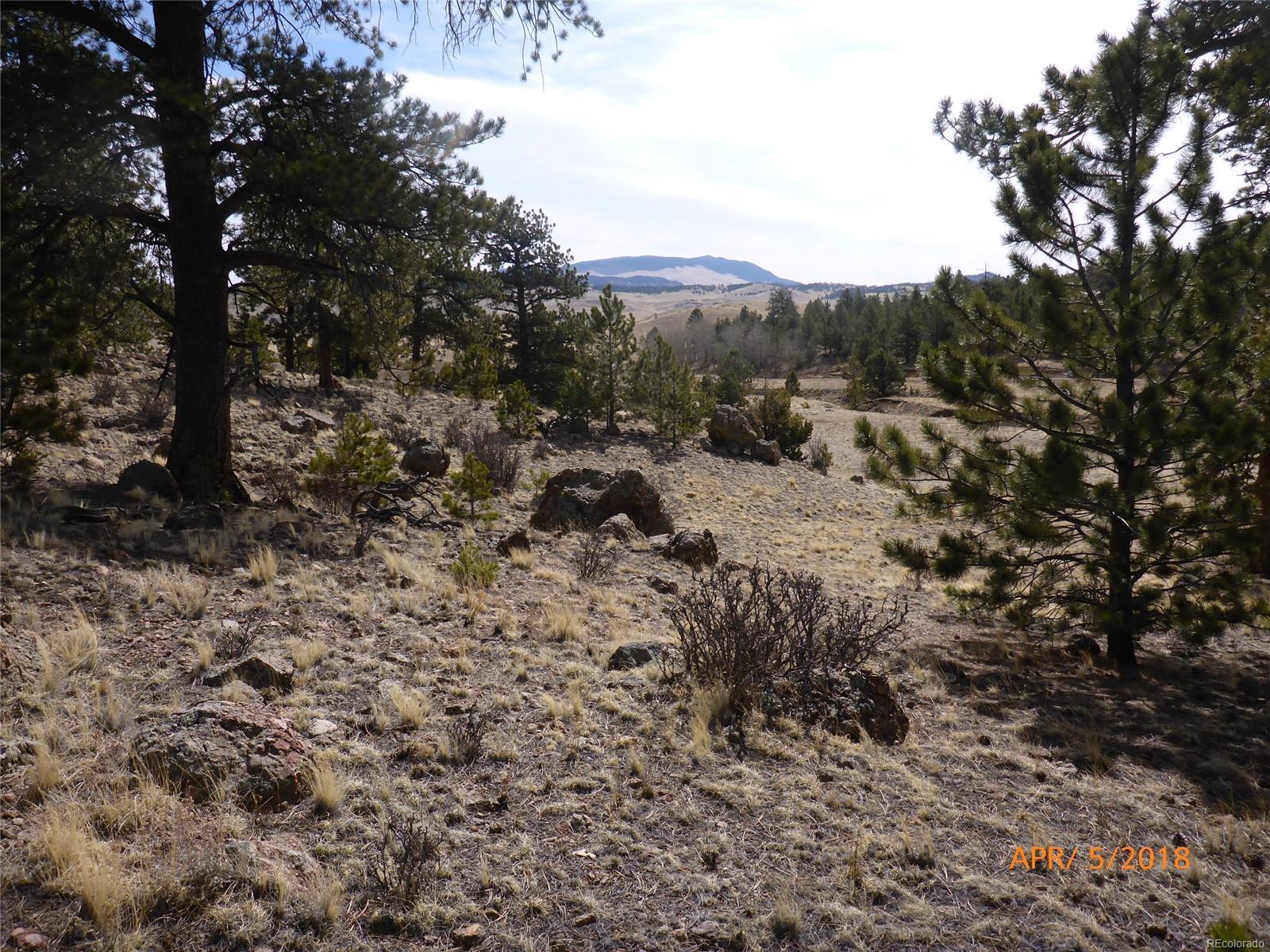 000 Isadowa Trail, Hartsel, CO 80449 - Hartsel, CO real estate listing