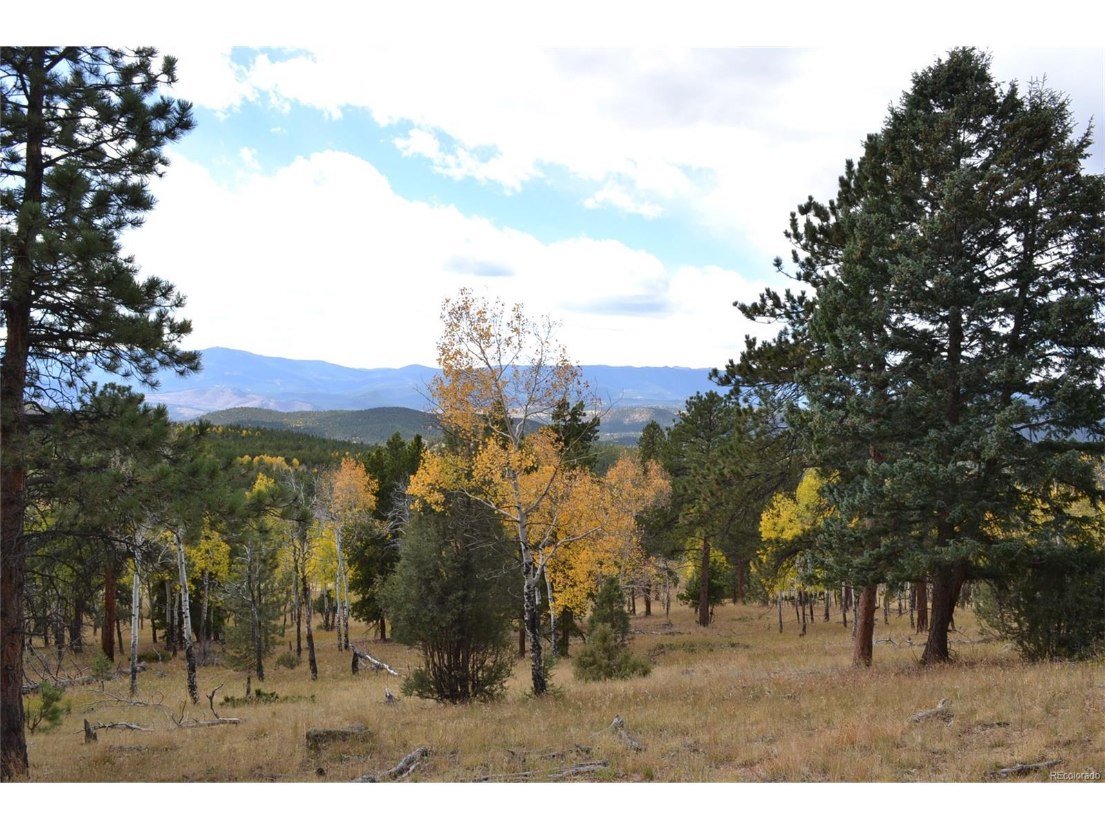 26739 Mirage Drive, Conifer, CO 80433 - Conifer, CO real estate listing