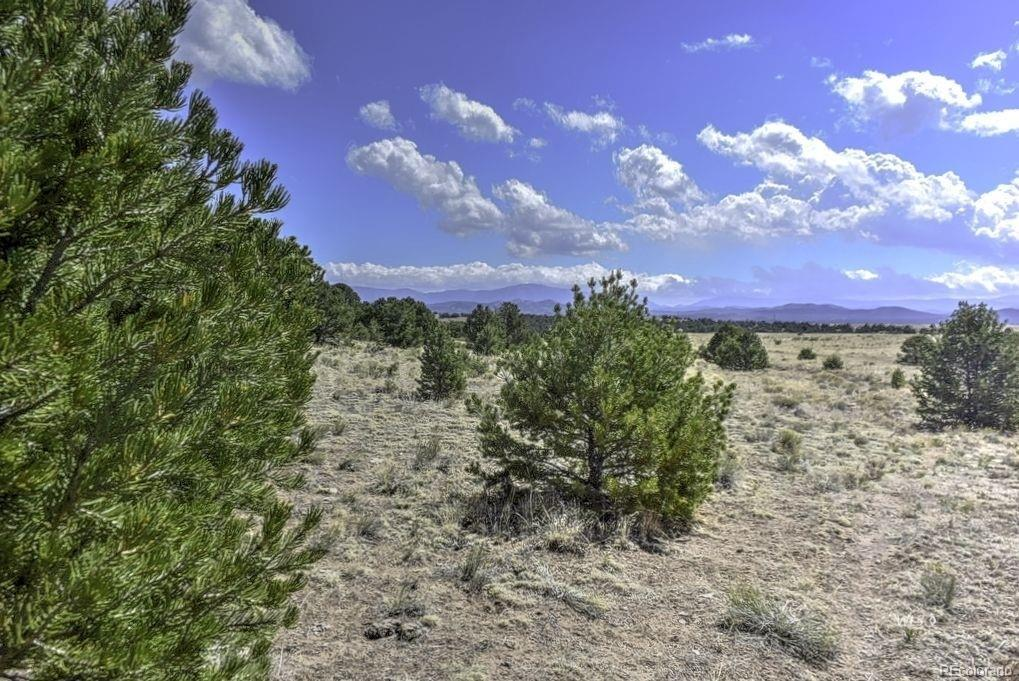 Beckwith Mountain Ranch Real Estate Listings Main Image