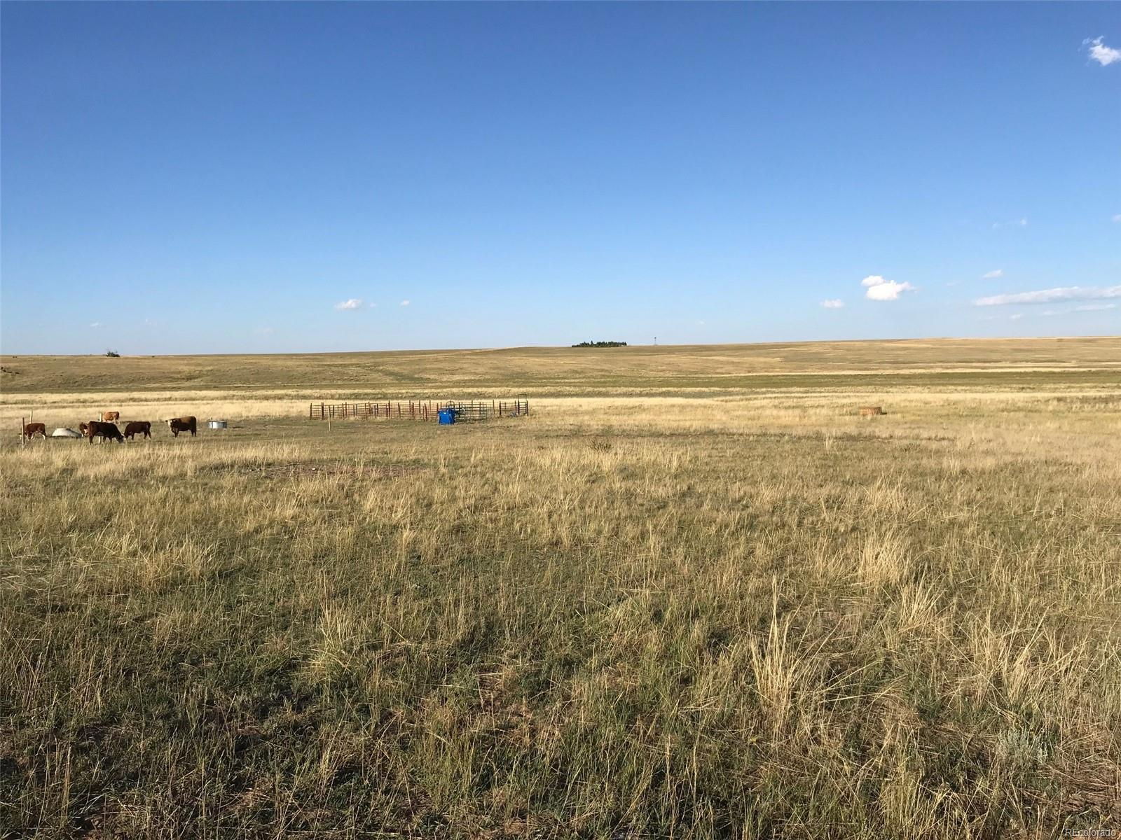 12155 Oil Well Road, Calhan, CO 80808 - Calhan, CO real estate listing