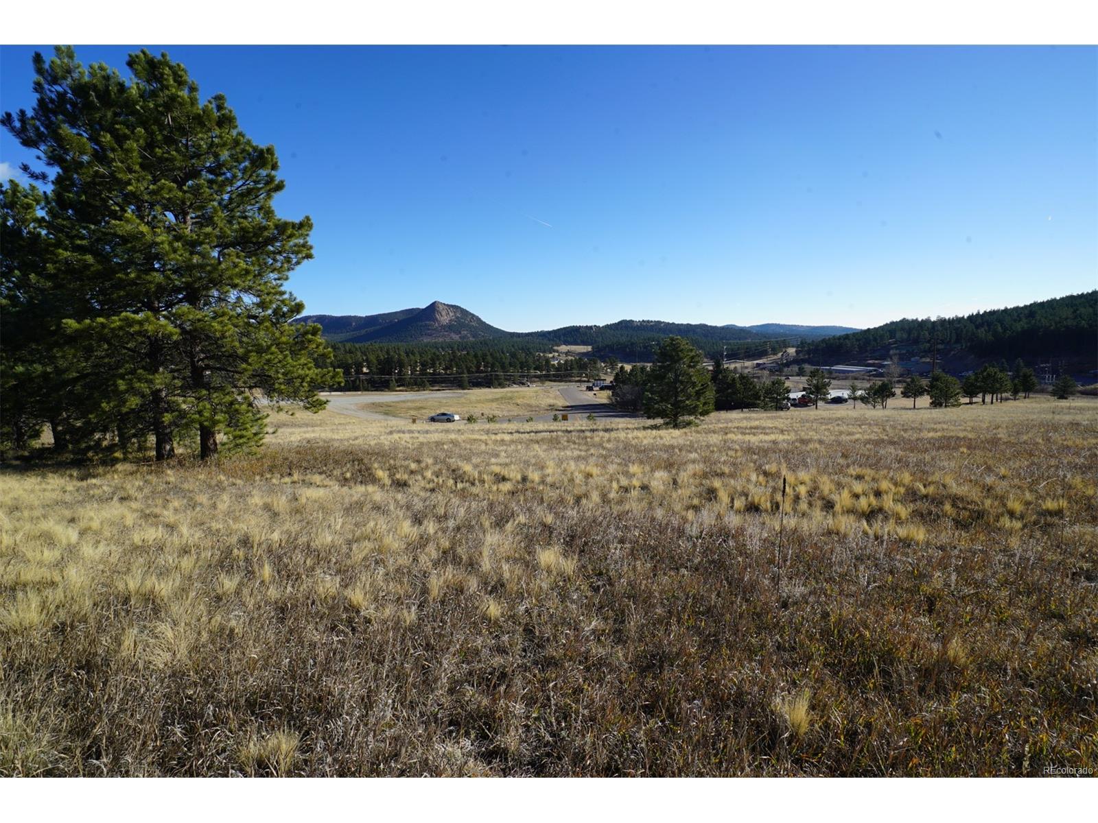 19 Bull Dogger Drive, Bailey, CO 80421 - Bailey, CO real estate listing