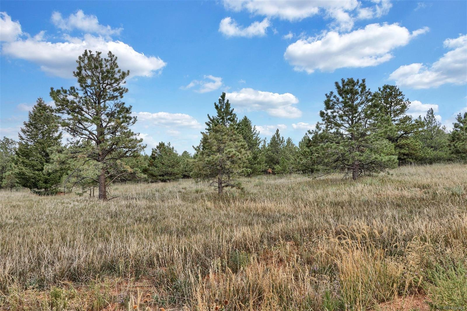 Lot 11 Forest View Road, Monument, CO 80132 - Monument, CO real estate listing
