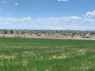 16188 Watkins Road, Brighton, CO 80601 - Brighton, CO real estate listing