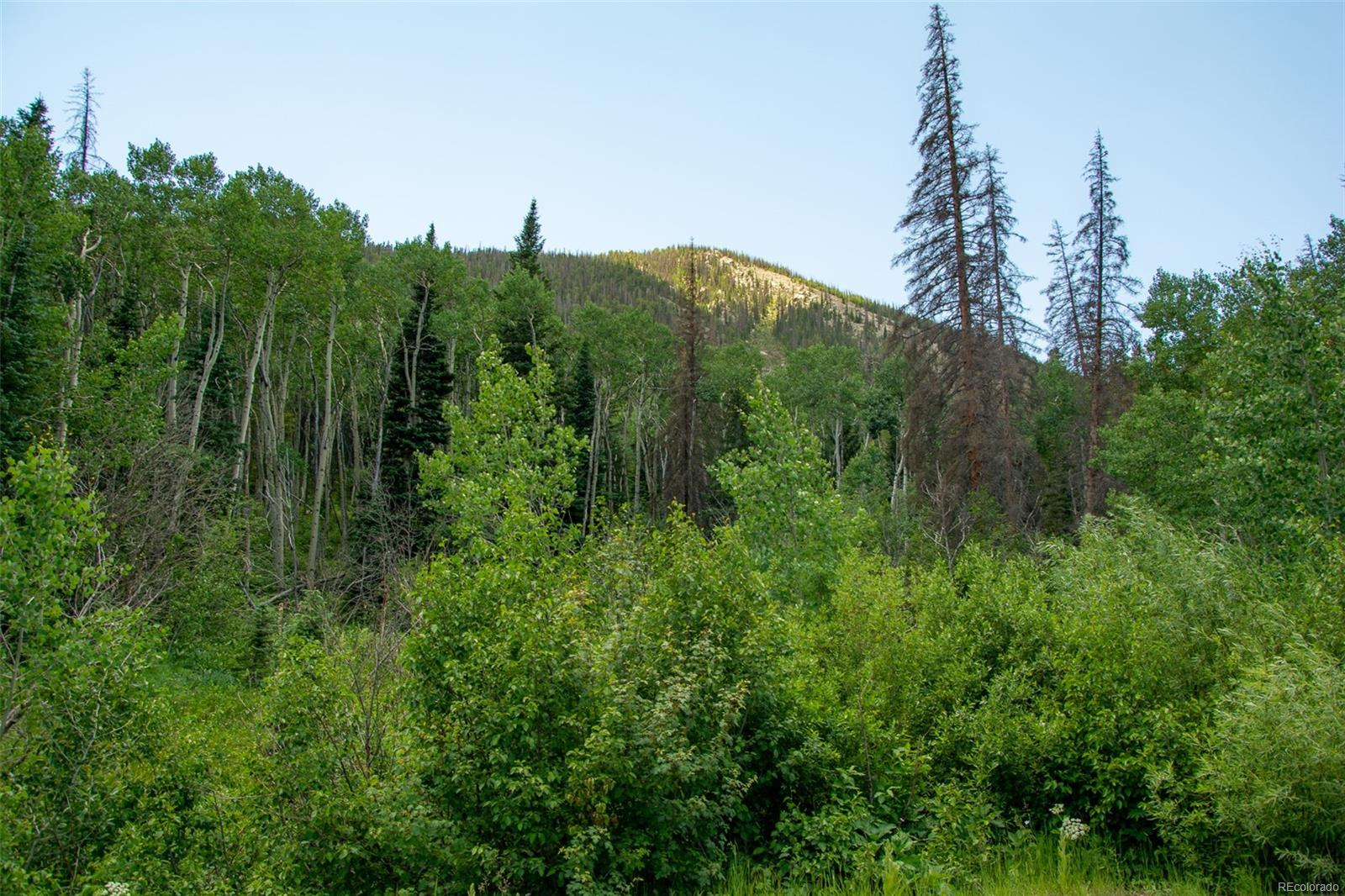 000 Jones Street, Garfield, CO 81201 - Garfield, CO real estate listing