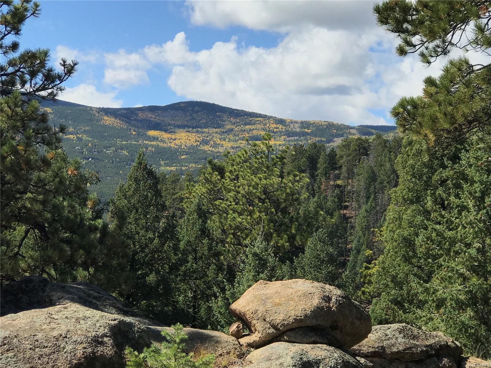 32734 Lodgepole Circle, Evergreen, CO 80439 - Evergreen, CO real estate listing