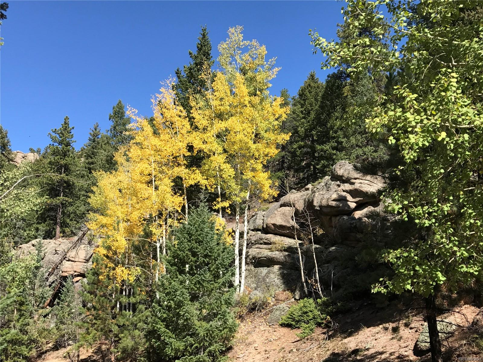 32744 Lodgepole Circle, Evergreen, CO 80439 - Evergreen, CO real estate listing