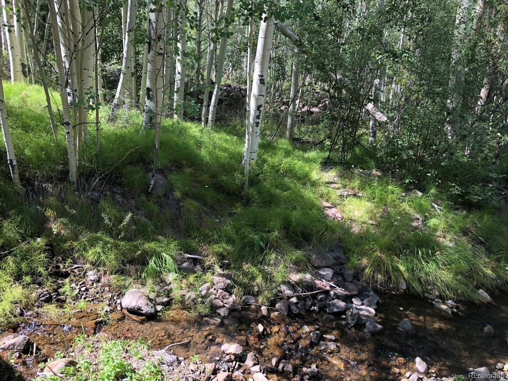24 Deer Park, Antonito, CO 81120 - Antonito, CO real estate listing