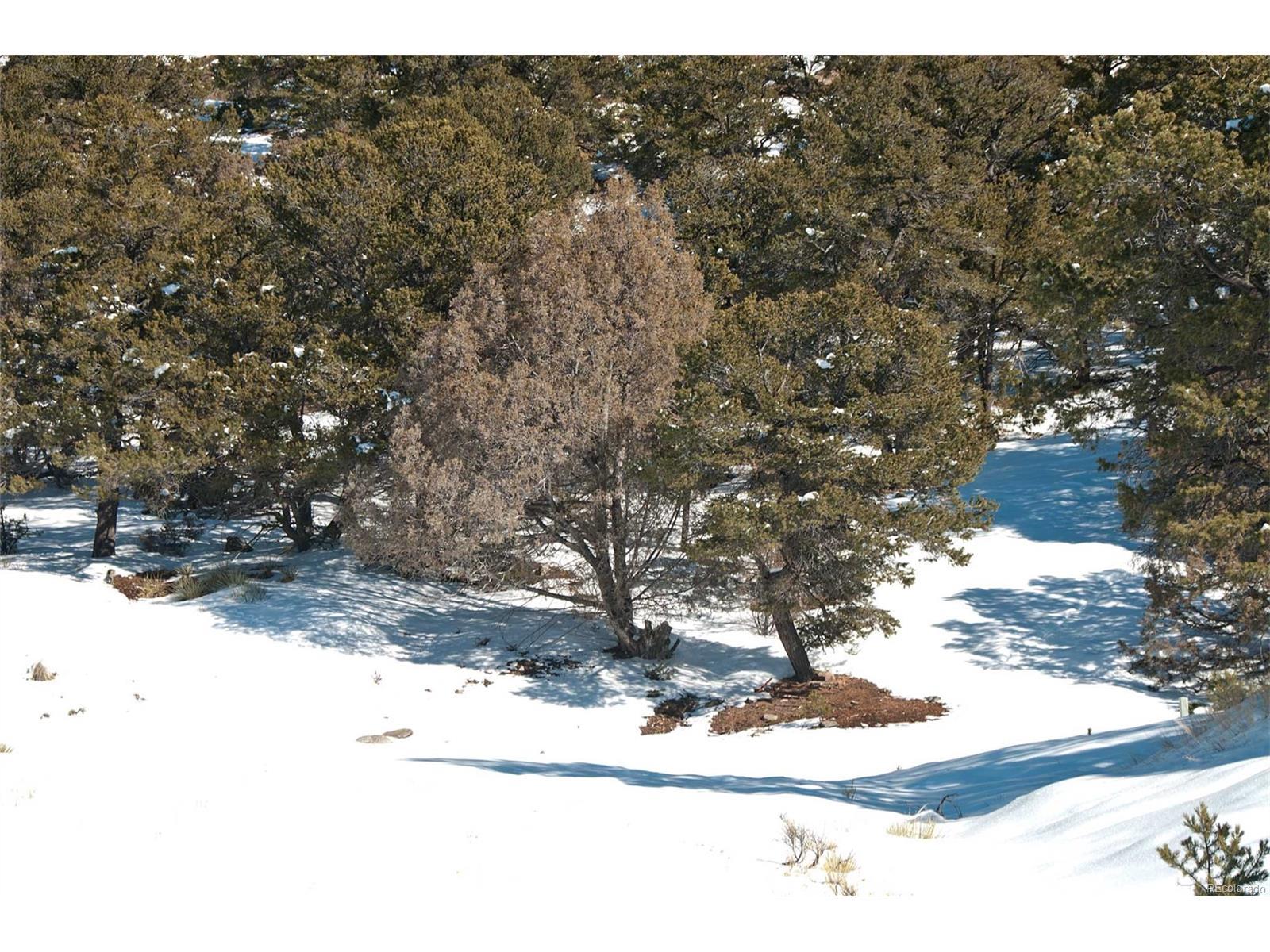 4312 & 4313 Craggy Bluff Ol, Crestone, CO 81131 - Crestone, CO real estate listing