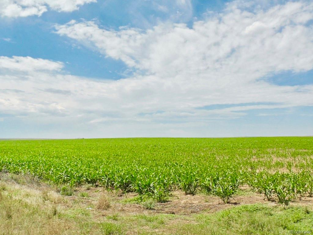 County RD 42, Byers, CO 80103 - Byers, CO real estate listing