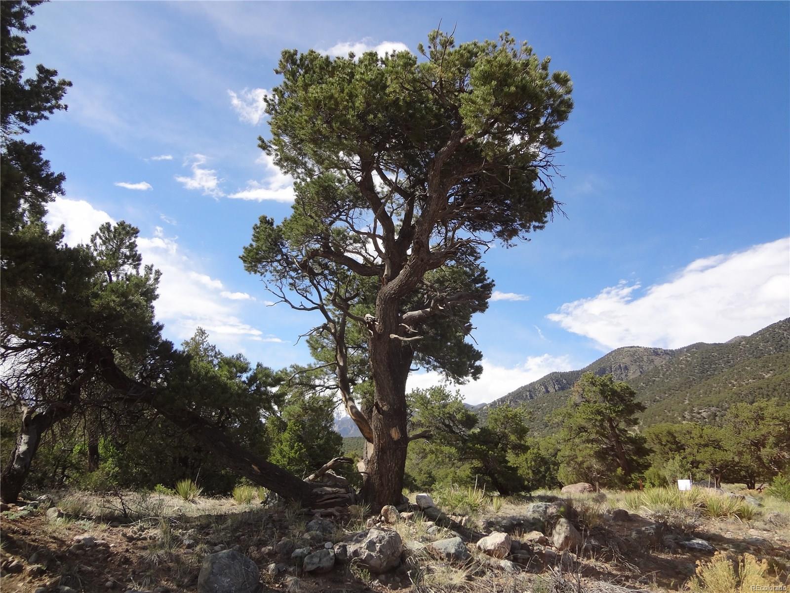 3557 Double Tree Ol, Crestone, CO 81131 - Crestone, CO real estate listing