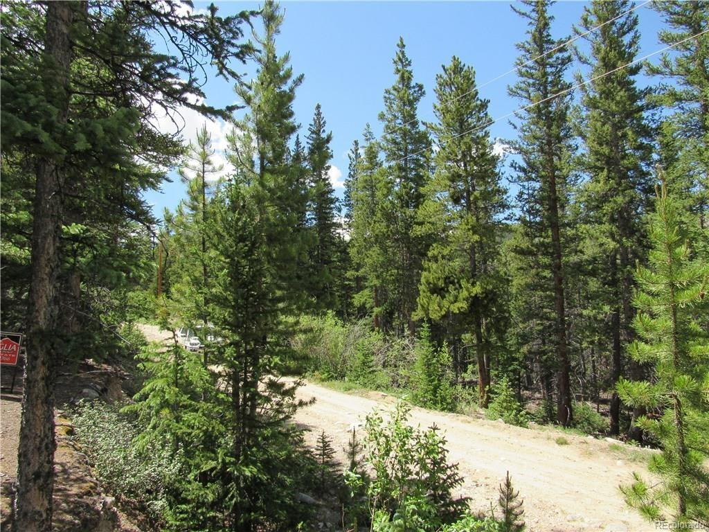 144 Orphan Boy Drive, Alma, CO 80420 - Alma, CO real estate listing