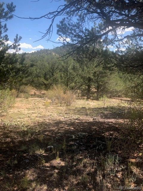 000 38th Trail, Cotopaxi, CO 81233 - Cotopaxi, CO real estate listing