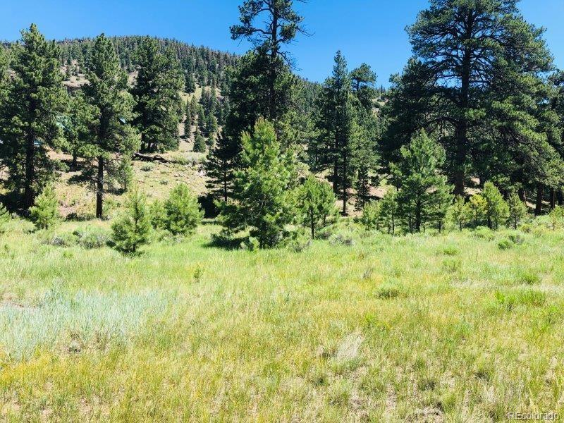 151 Wagon Train Drive, Antonito, CO 81120 - Antonito, CO real estate listing