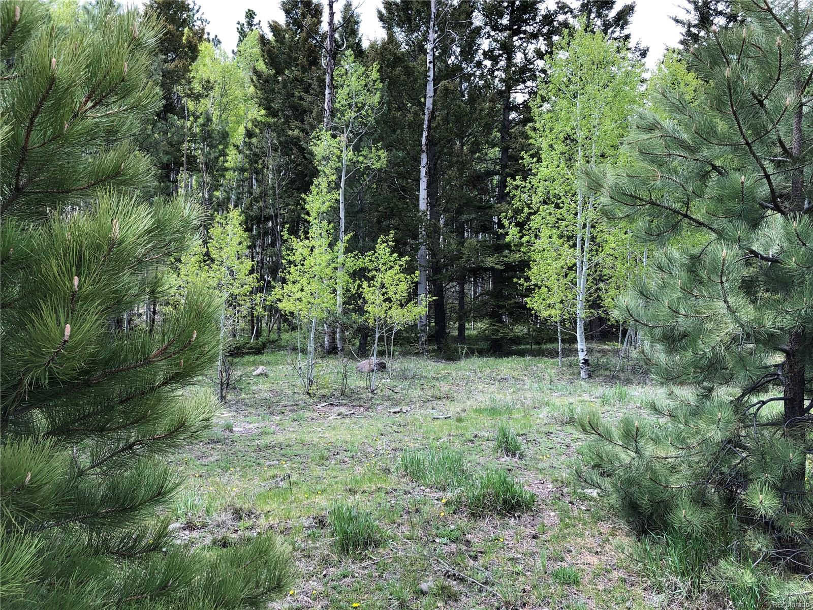 22 W Canyon View Drive, Antonito, CO 81120 - Antonito, CO real estate listing