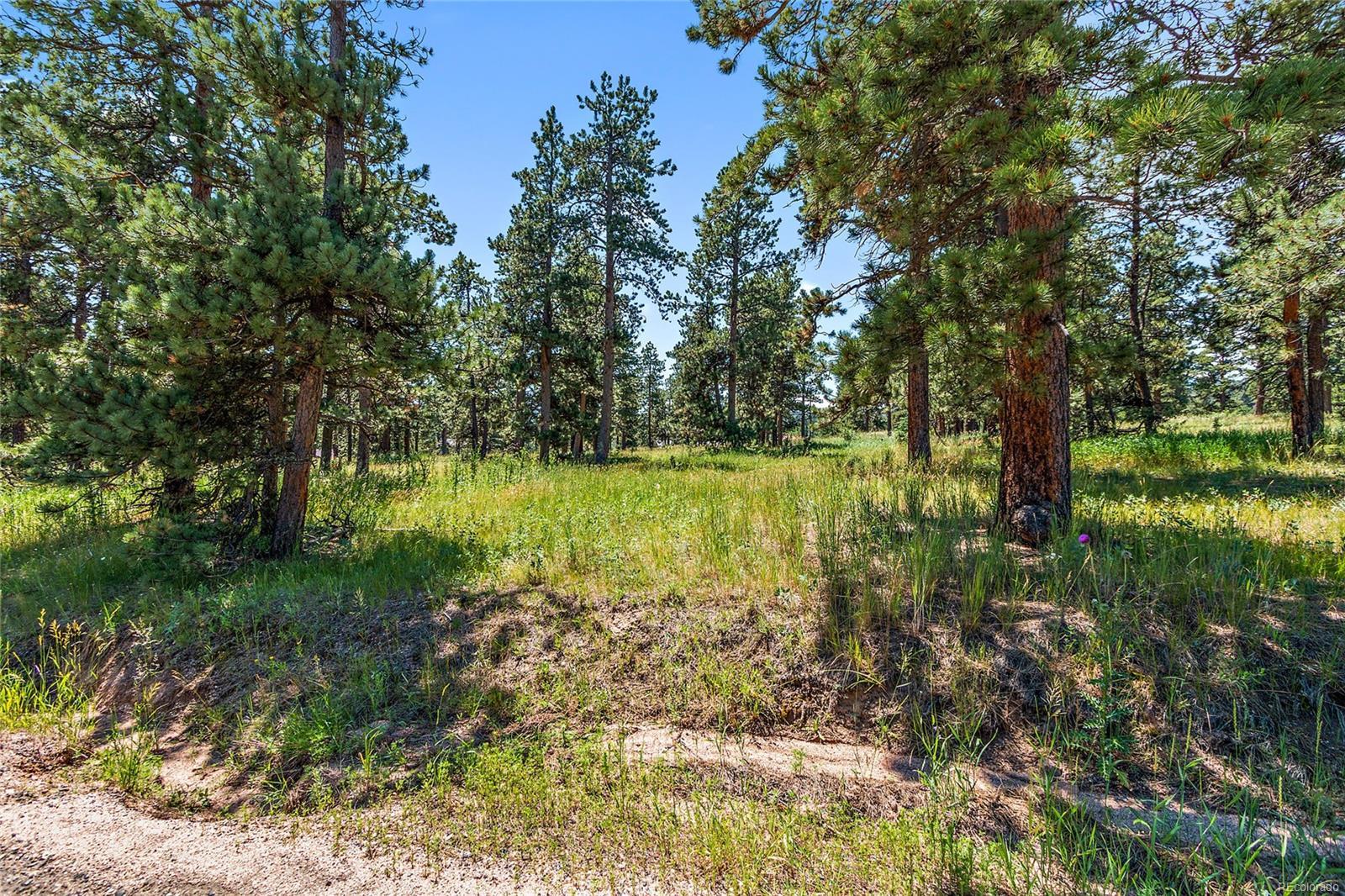 8177 Centaur Drive, Evergreen, CO 80439 - Evergreen, CO real estate listing