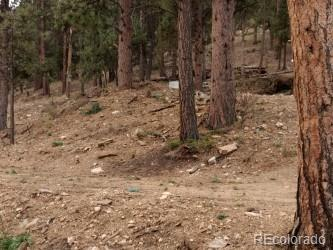 22 High View Lane, Bailey, CO 80421 - Bailey, CO real estate listing