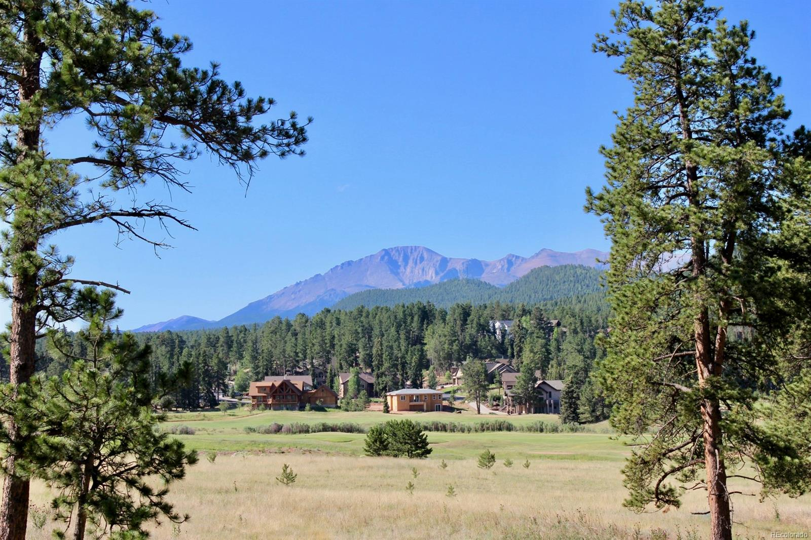 Lucky Lady Drive, Woodland Park, CO 80863 - Woodland Park, CO real estate listing